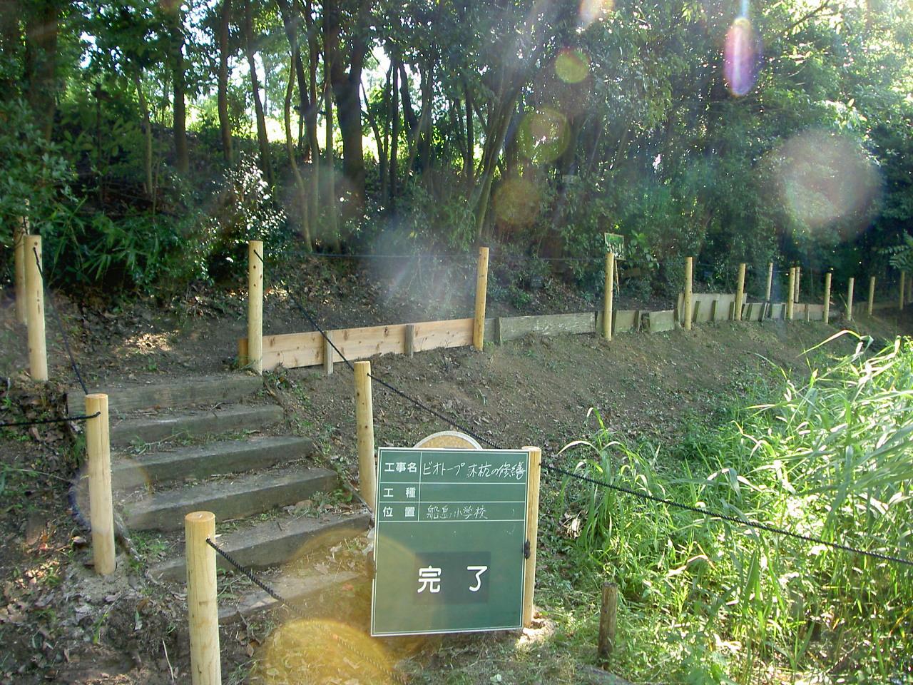 山長造園 ビオトープ 施工事例